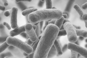 dentiste buccal bactéries microbiote santé covid covid19 coronavirus docteur Ludovic Ha